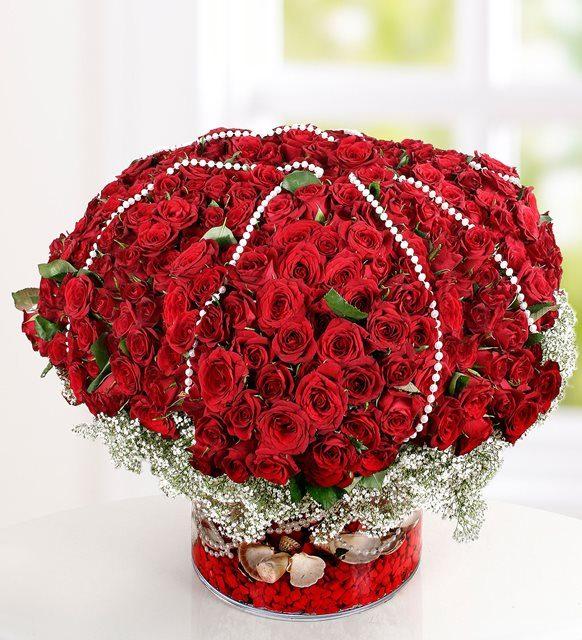 Aşkın Melodisi 500 Kırmızı Gül